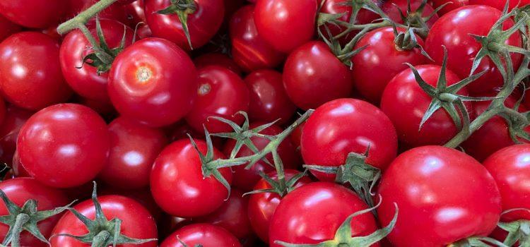 Unsere leckeren Heinenhof-Tomaten